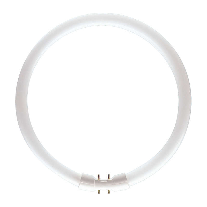 Philips 64261525 TL5 Circ 60W 373mm 840